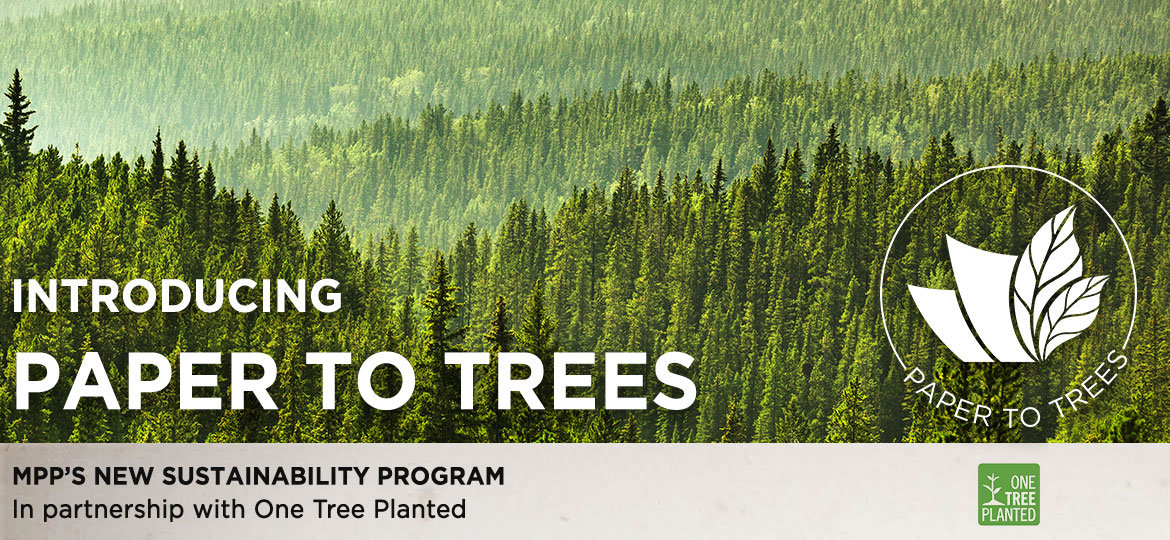 Introducing Paper to Trees Sustainability Program